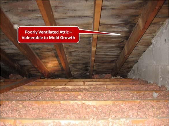 Poorly ventilated attic vulnerable to mold growth
