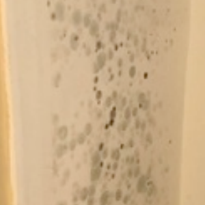 Light and dark black mould spots on an off white wall
