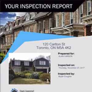Create stunning inspection reports